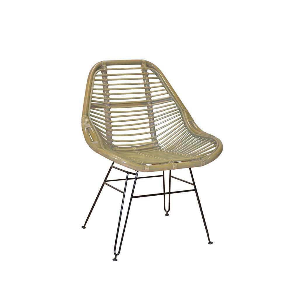 grau eisen Esszimmerstühle online kaufen   Möbel