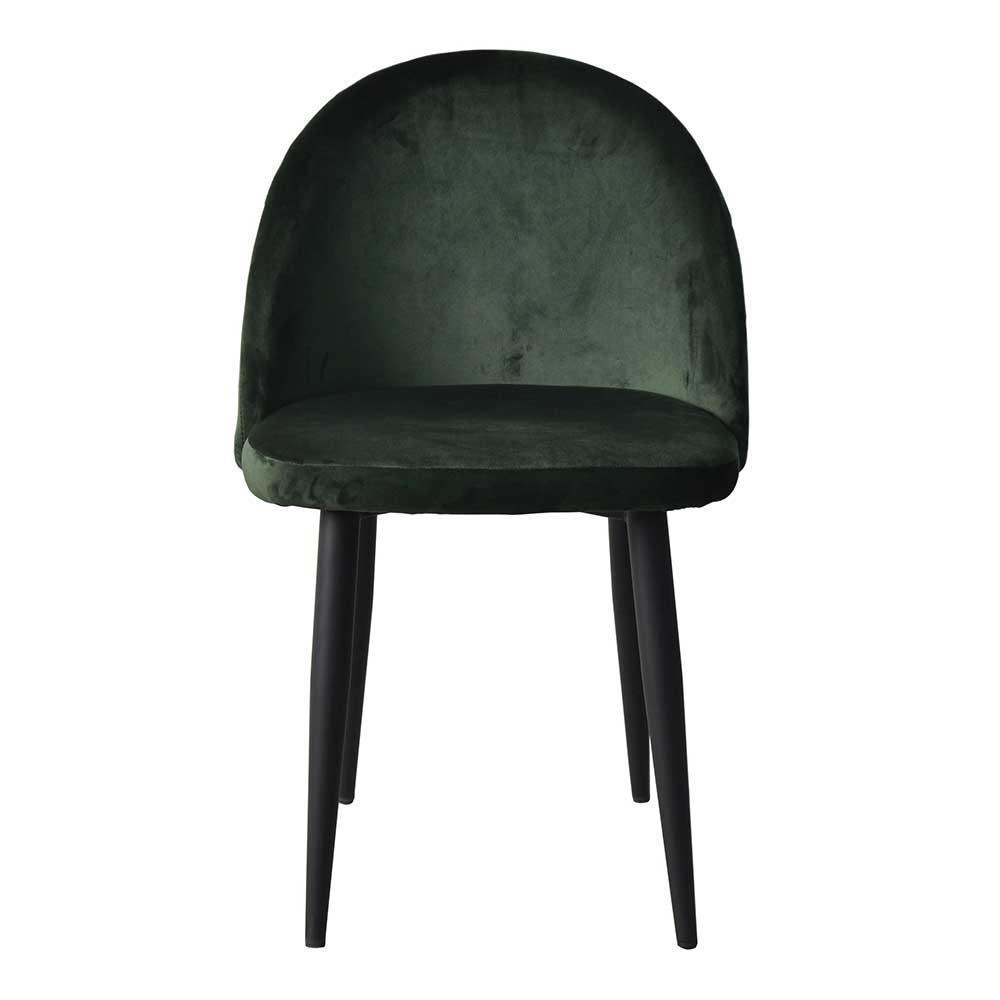 Samt Esstisch Stühle in Dunkelgrün Metallgestell (2er Set)