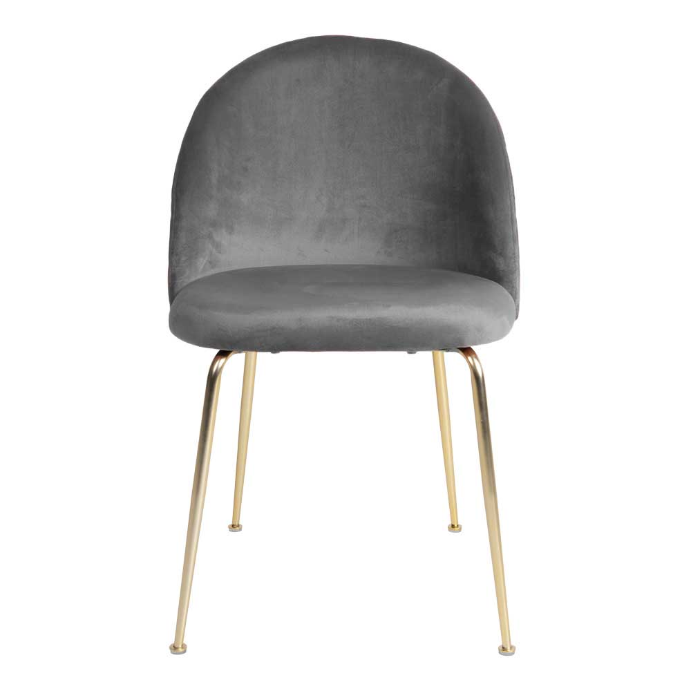 Esstisch Stühle in Grau Samt Metallgestell in Messingfarben (2er Set)