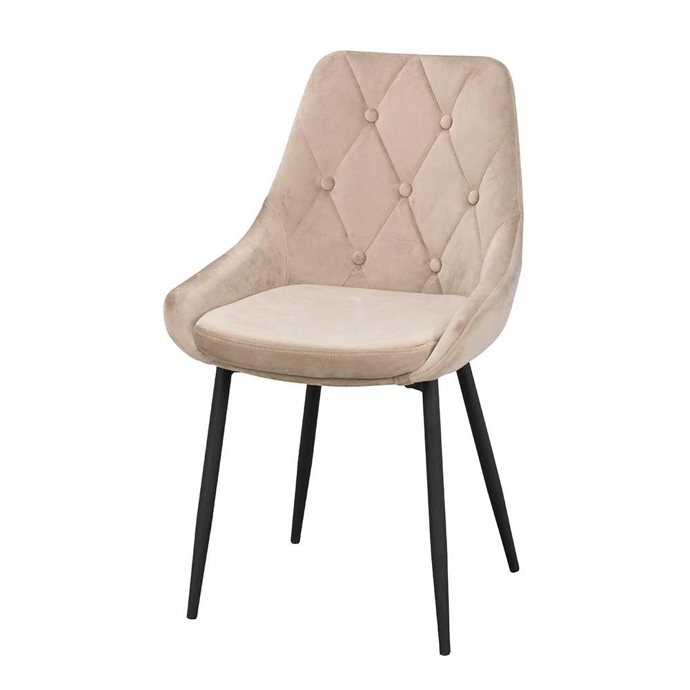 Esstisch Stühle in Beige Samt Knöpfen verziert (2er Set)