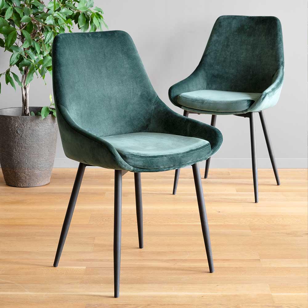 Samt Esstisch Stühle in Dunkelgrün und Schwarz modernem Design (2er Set)